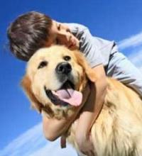 Il bambino e il cane