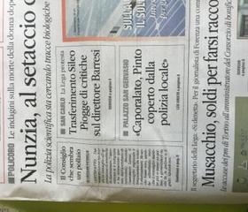 Il pollaio regionale, dal quotidiano del Sud.